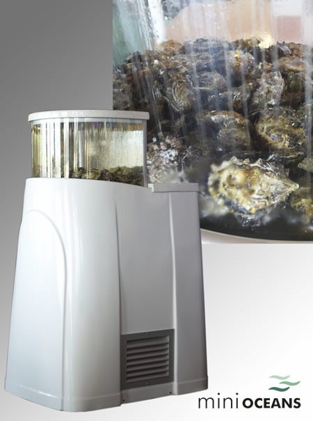 Live Shellfish Display Units Oyster Tanks